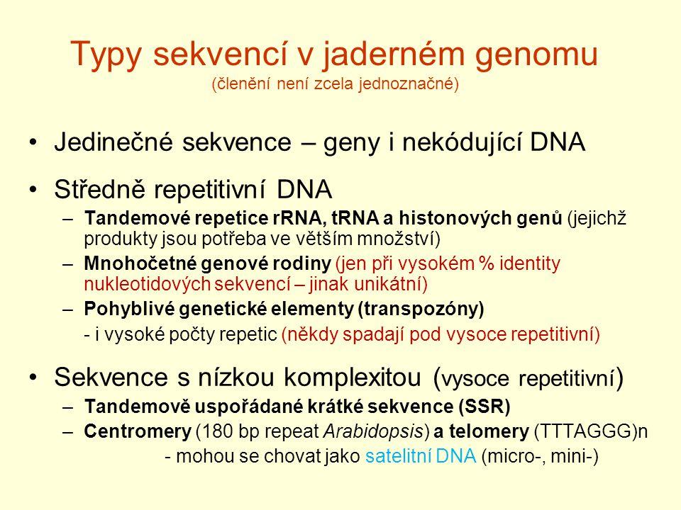 Typy sekvencí v jaderném genomu (členění není zcela jednoznačné)