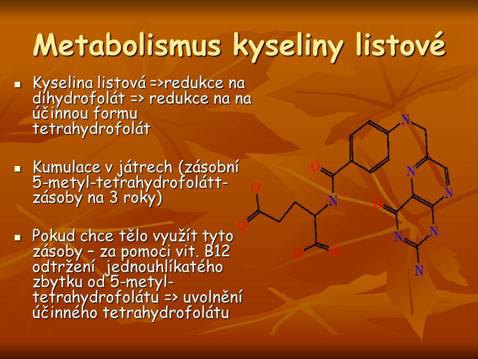 Metabolismus kyseliny listové