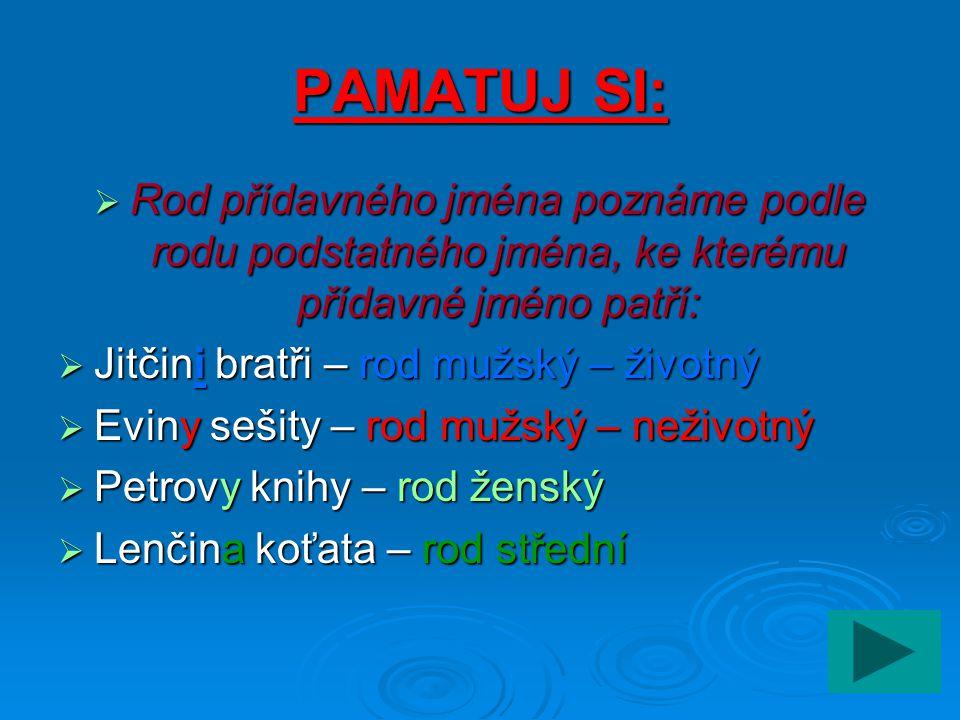 PAMATUJ SI: Rod přídavného jména poznáme podle rodu podstatného jména, ke kterému přídavné jméno patří: