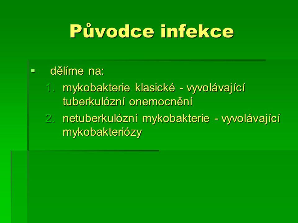 Původce infekce dělíme na: