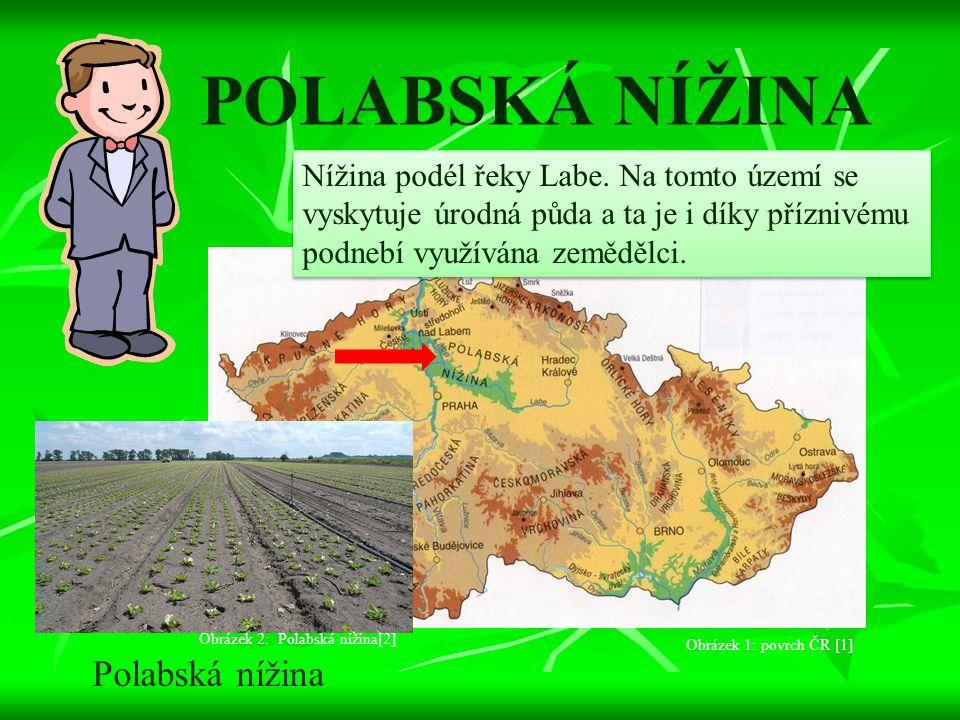 POLABSKÁ NÍŽINA Polabská nížina