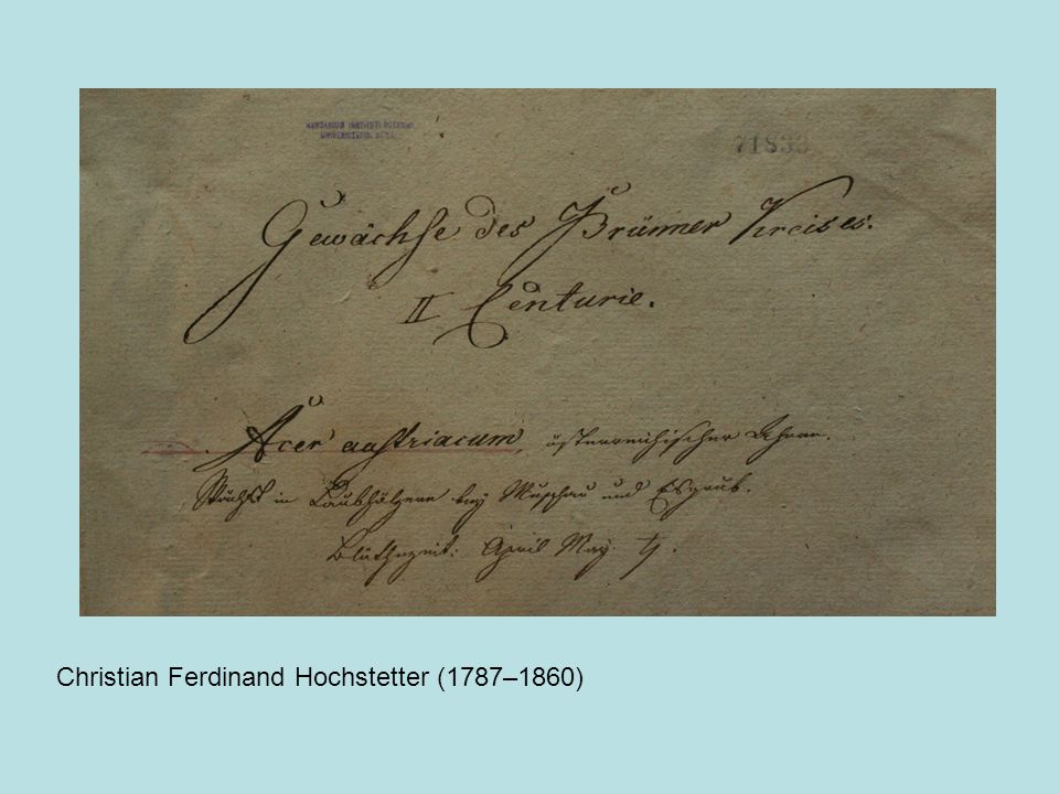 Christian Ferdinand Hochstetter (1787–1860)