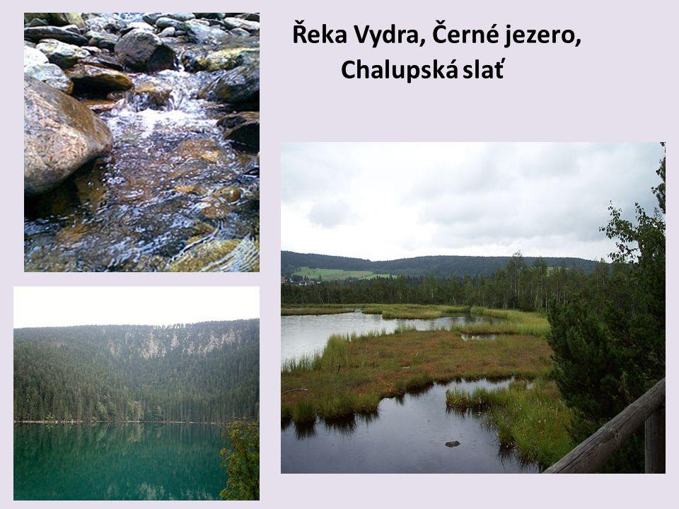 Řeka Vydra, Černé jezero, Chalupská slať
