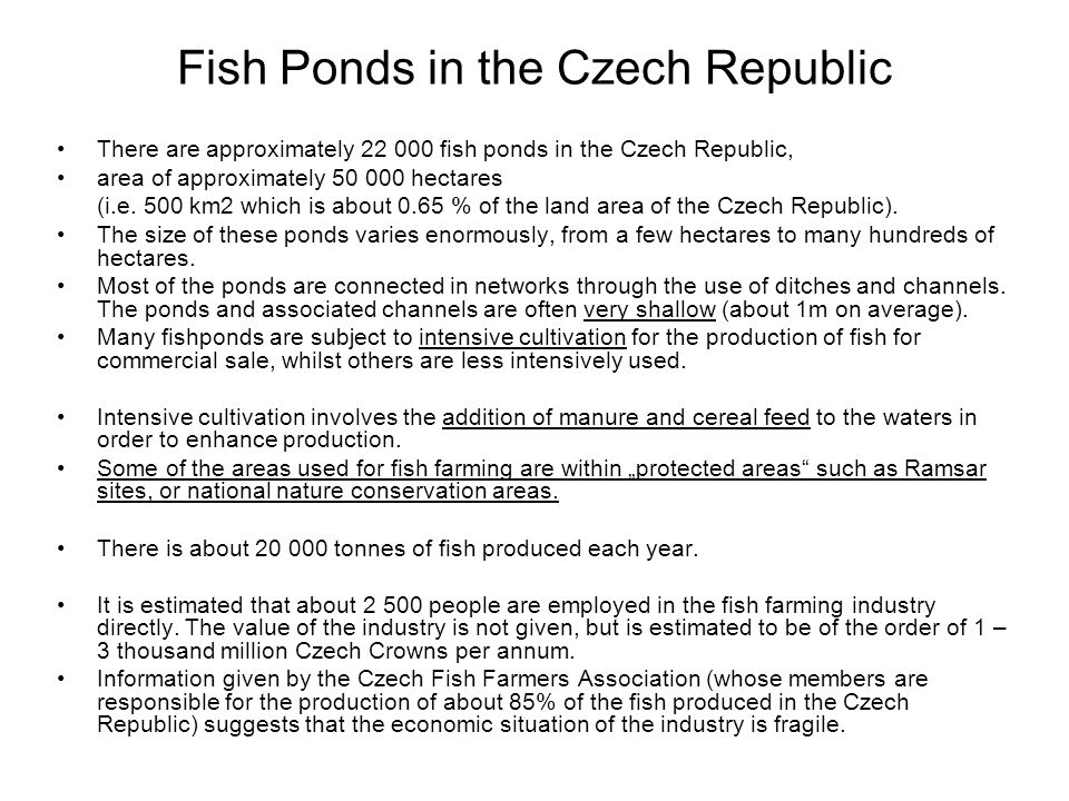 Fish Ponds in the Czech Republic