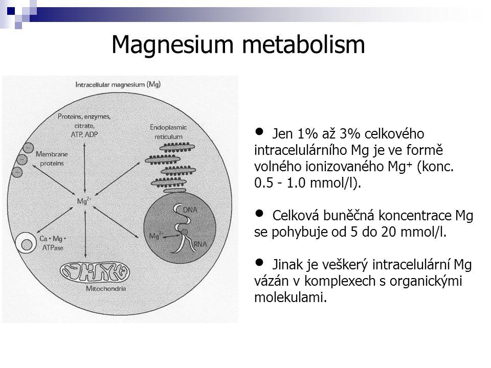 Magnesium metabolism Jen 1% až 3% celkového intracelulárního Mg je ve formě volného ionizovaného Mg+ (konc. 0.5 - 1.0 mmol/l).
