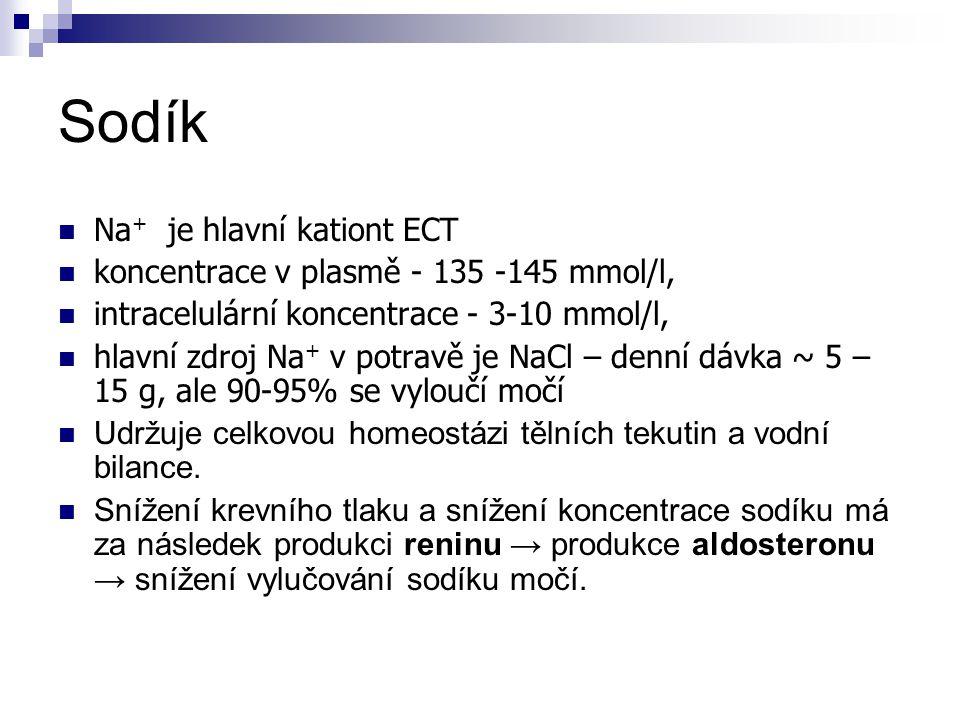 Sodík Na+ je hlavní kationt ECT
