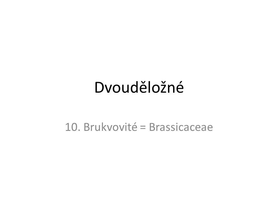 10. Brukvovité = Brassicaceae