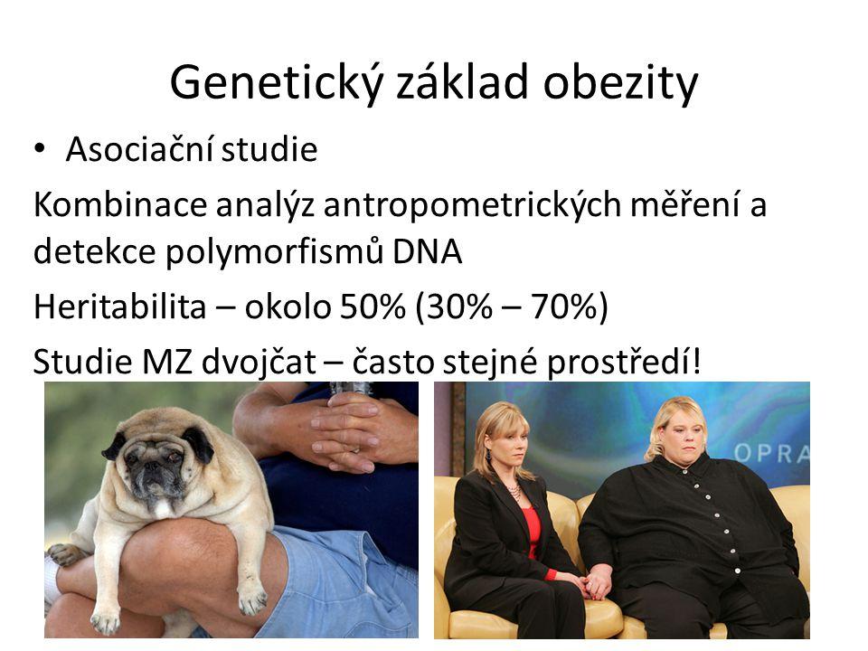 Genetický základ obezity