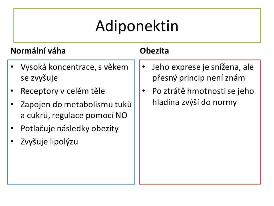 Adiponektin Normální váha Obezita