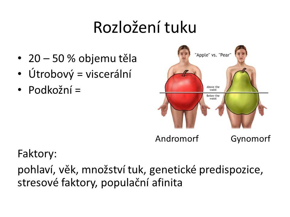 Rozložení tuku 20 – 50 % objemu těla Útrobový = viscerální Podkožní =