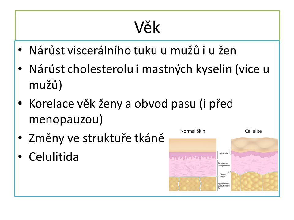 Věk Nárůst viscerálního tuku u mužů i u žen
