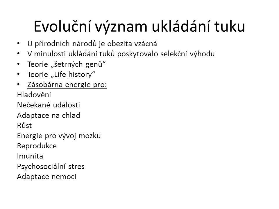 Evoluční význam ukládání tuku