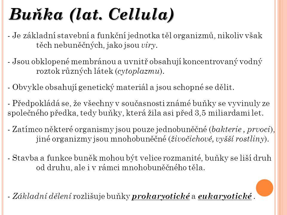 Buňka (lat. Cellula) Je základní stavební a funkční jednotka těl organizmů, nikoliv však těch nebuněčných, jako jsou viry.