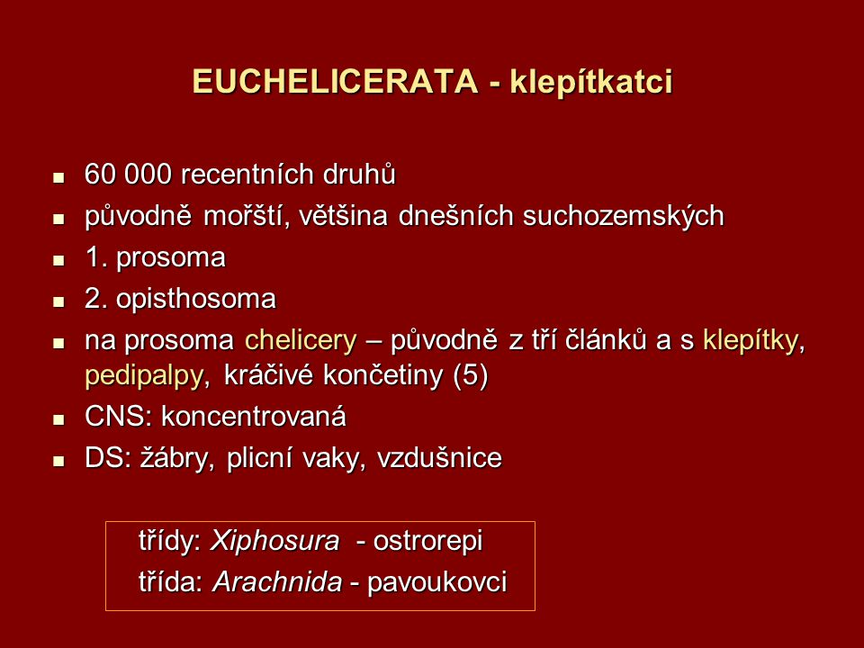 EUCHELICERATA - klepítkatci