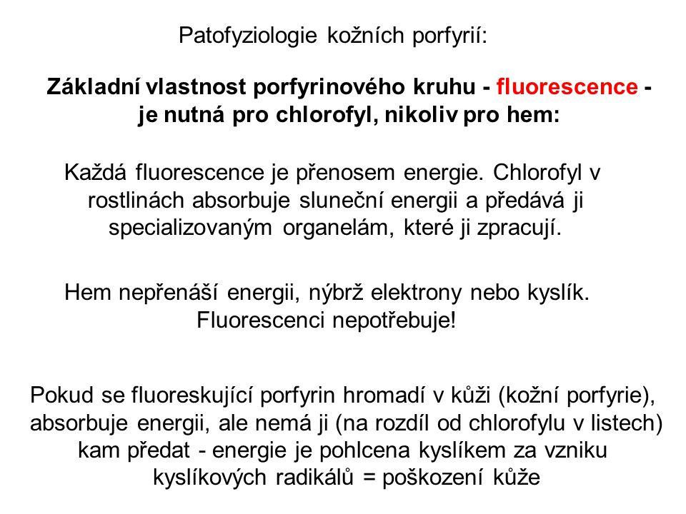 Patofyziologie kožních porfyrií: