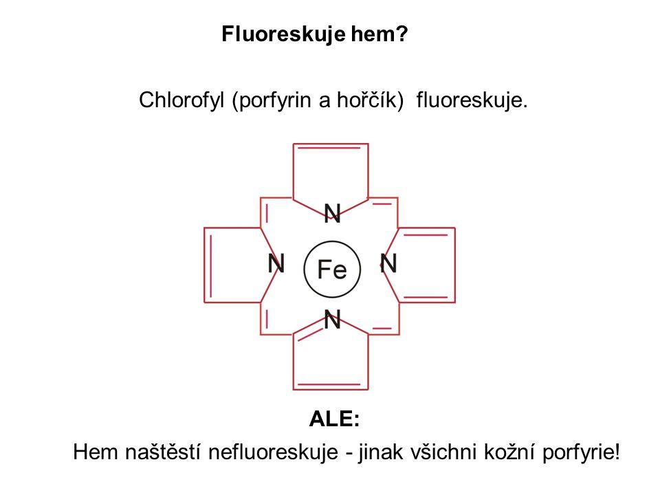 Fluoreskuje hem. Chlorofyl (porfyrin a hořčík) fluoreskuje.