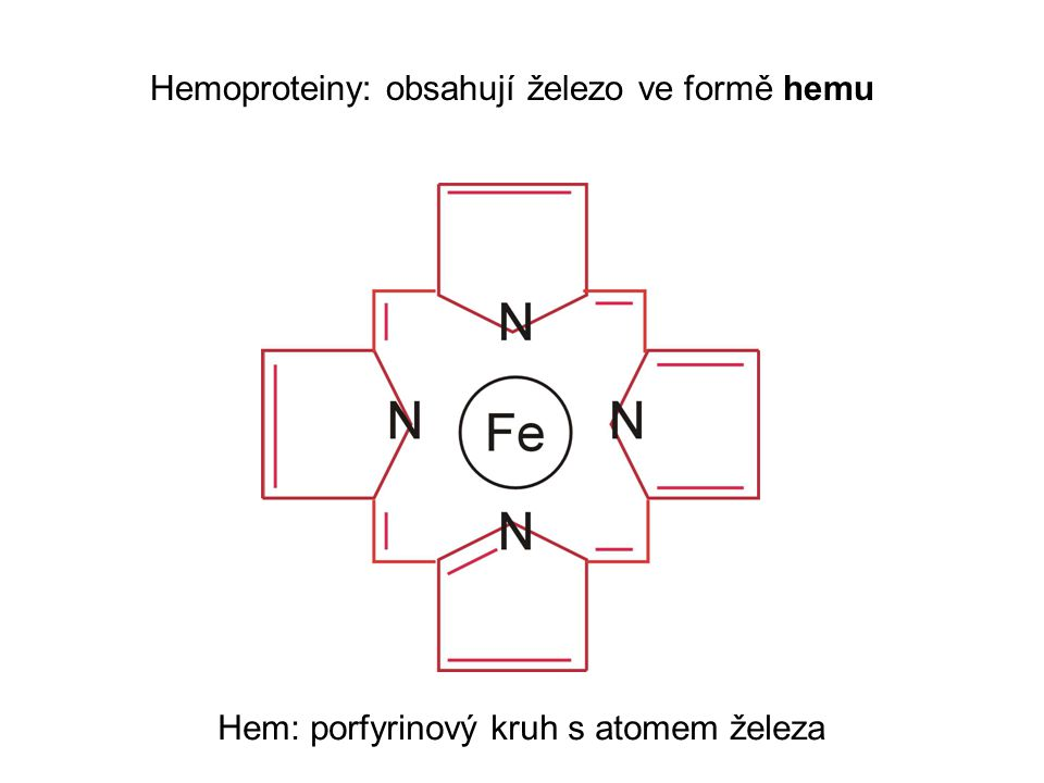 Hemoproteiny: obsahují železo ve formě hemu