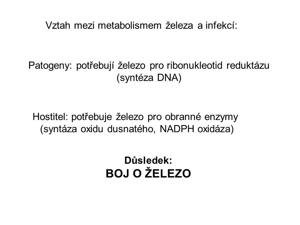 BOJ O ŽELEZO Vztah mezi metabolismem železa a infekcí: