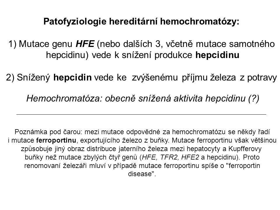 Patofyziologie hereditární hemochromatózy: