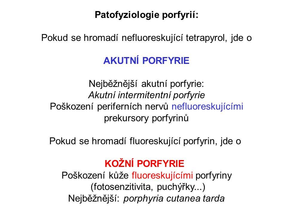 Patofyziologie porfyrií: