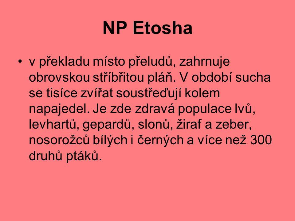 NP Etosha
