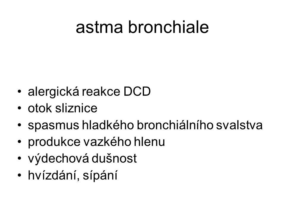 astma bronchiale alergická reakce DCD otok sliznice