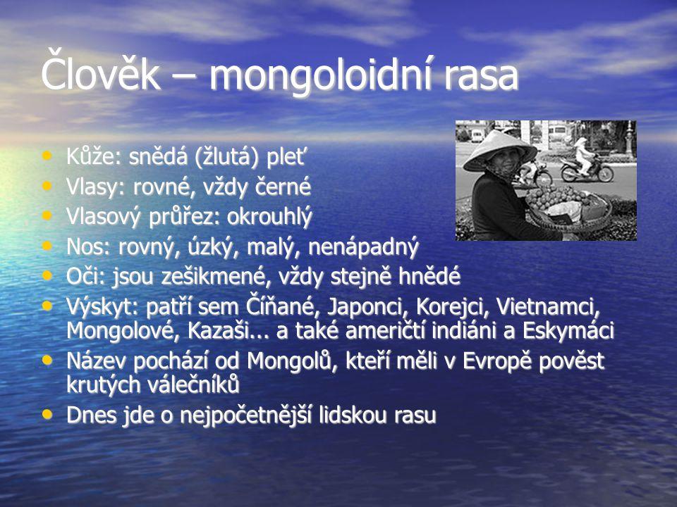 Člověk – mongoloidní rasa