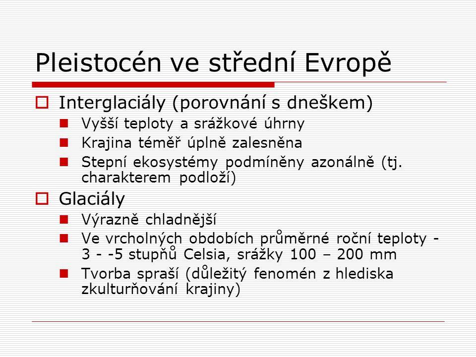 Pleistocén ve střední Evropě