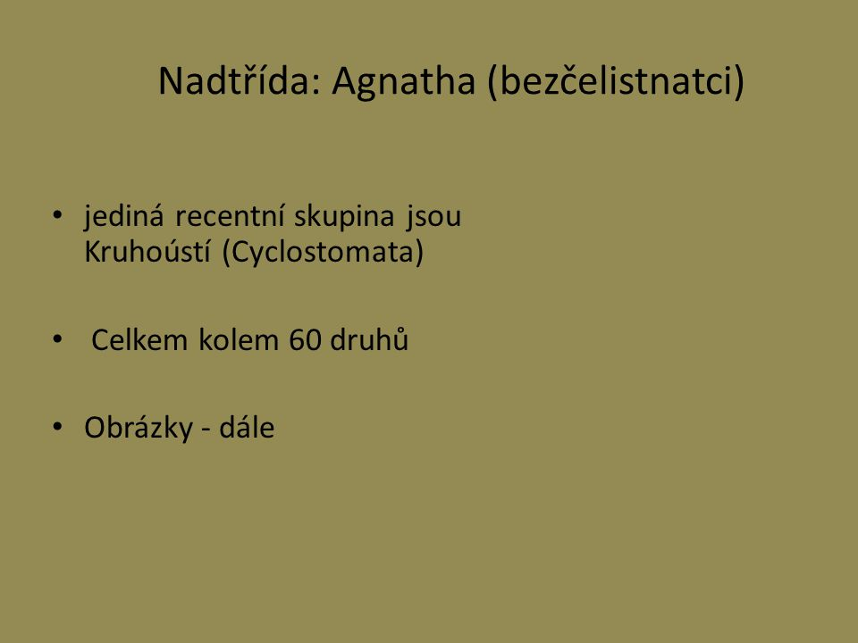 Nadtřída: Agnatha (bezčelistnatci)