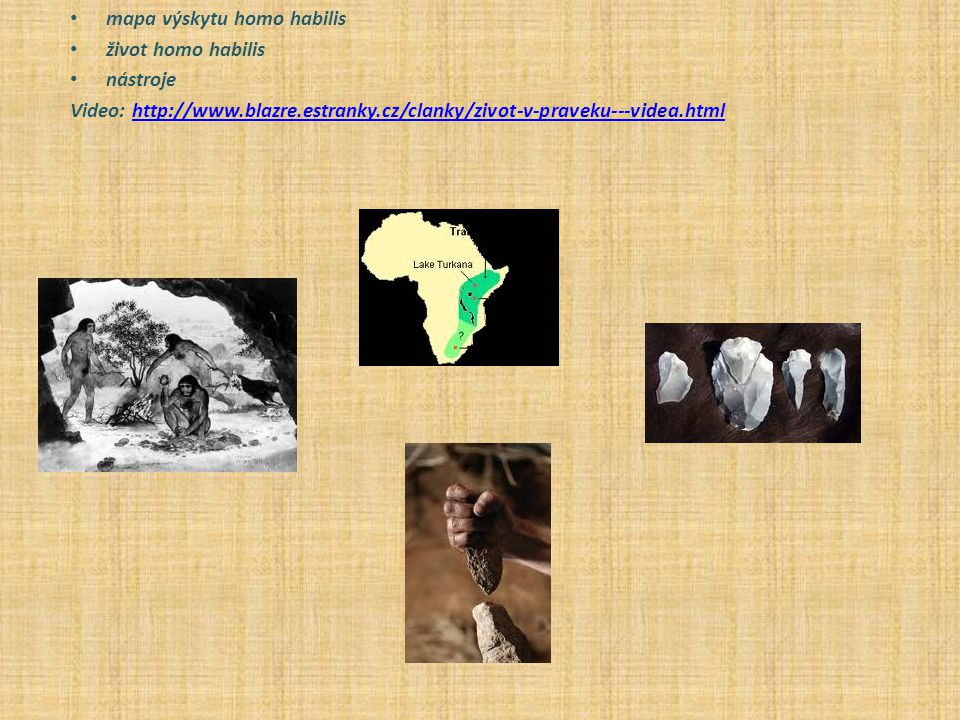 mapa výskytu homo habilis