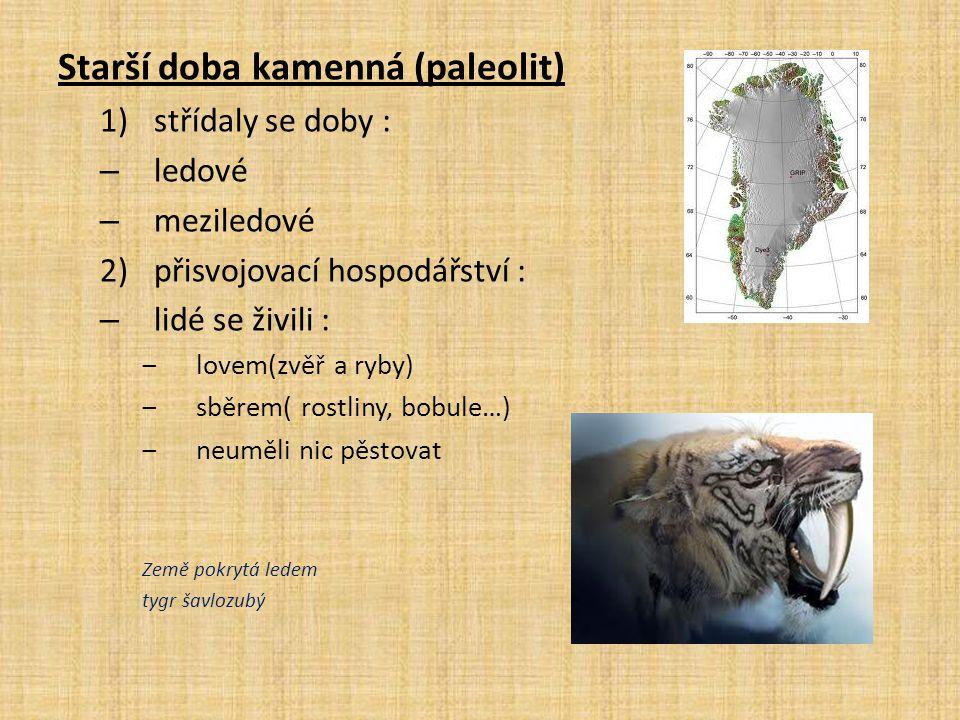 Starší doba kamenná (paleolit)