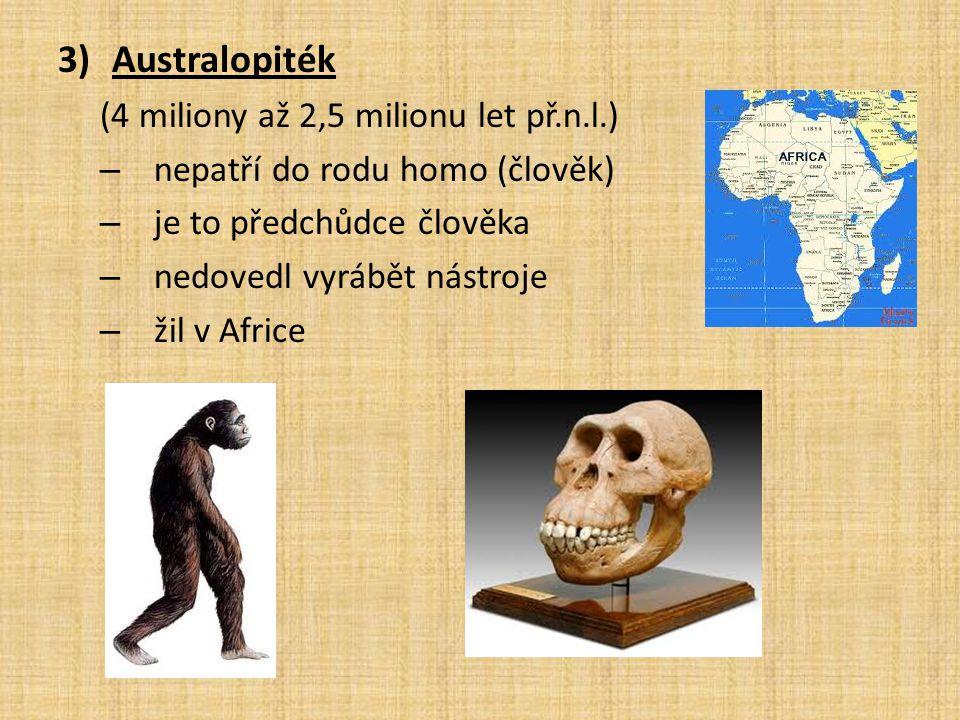 Australopiték (4 miliony až 2,5 milionu let př.n.l.)