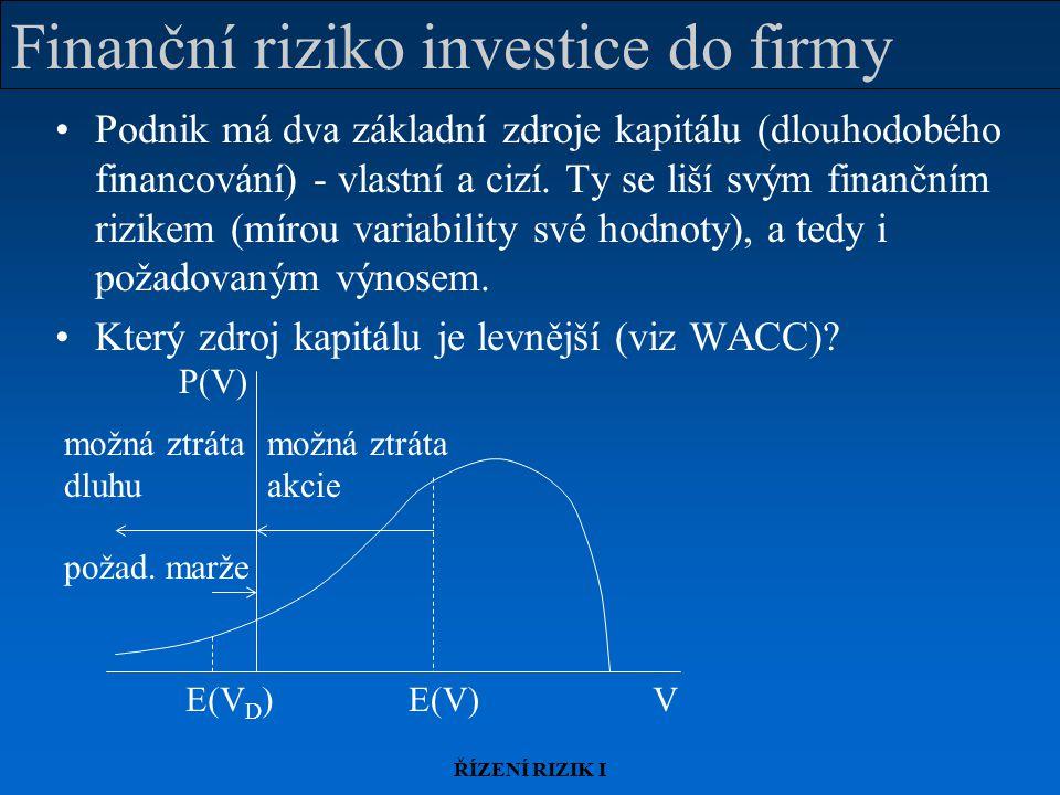 Finanční riziko investice do firmy