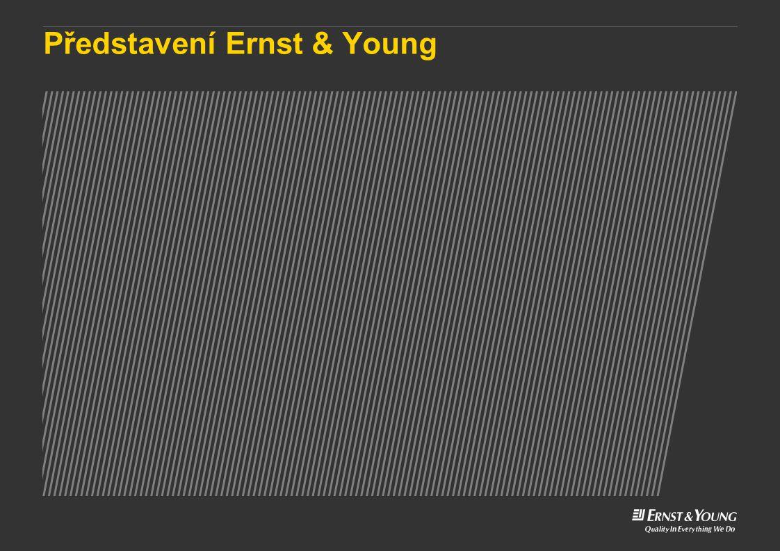 Představení Ernst & Young