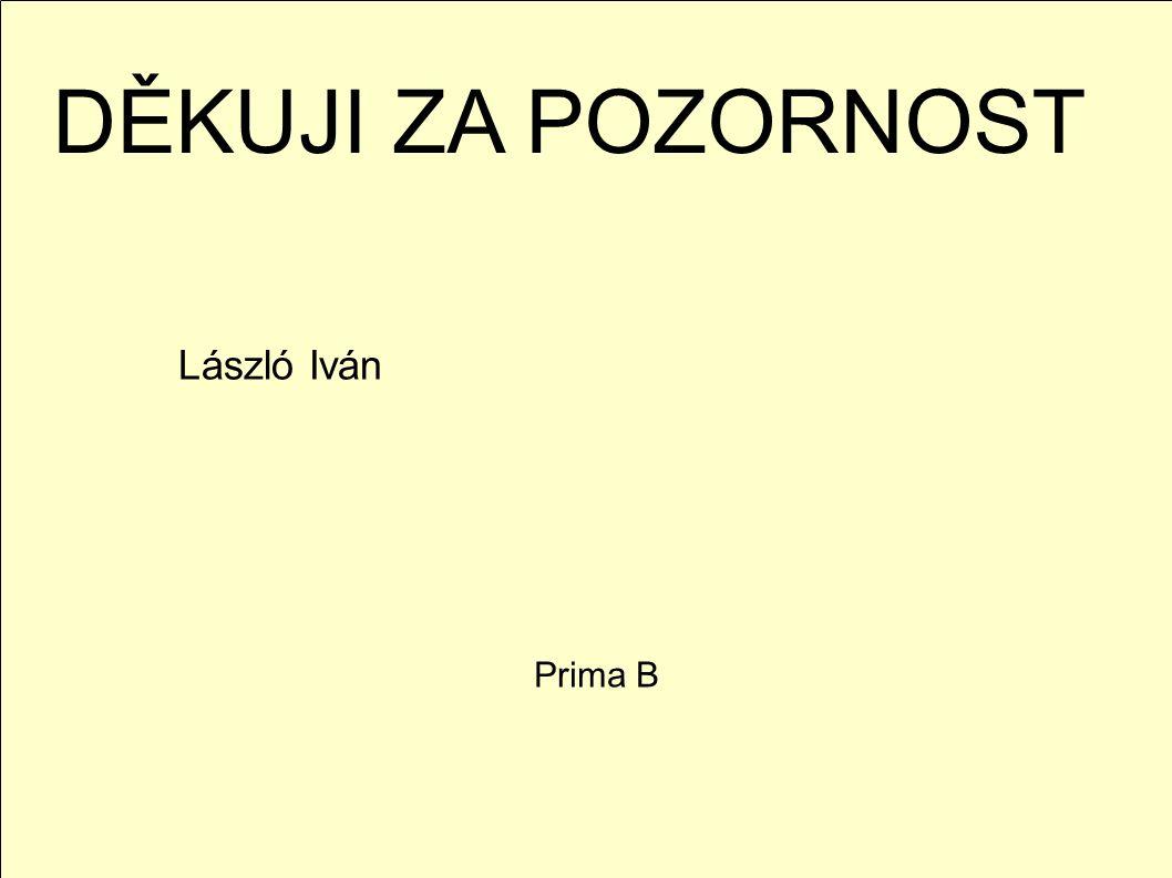 DĚKUJI ZA POZORNOST László Iván Prima B