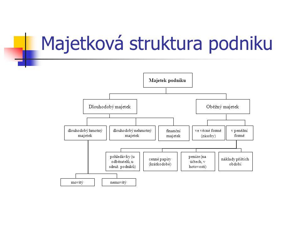 Majetková struktura podniku