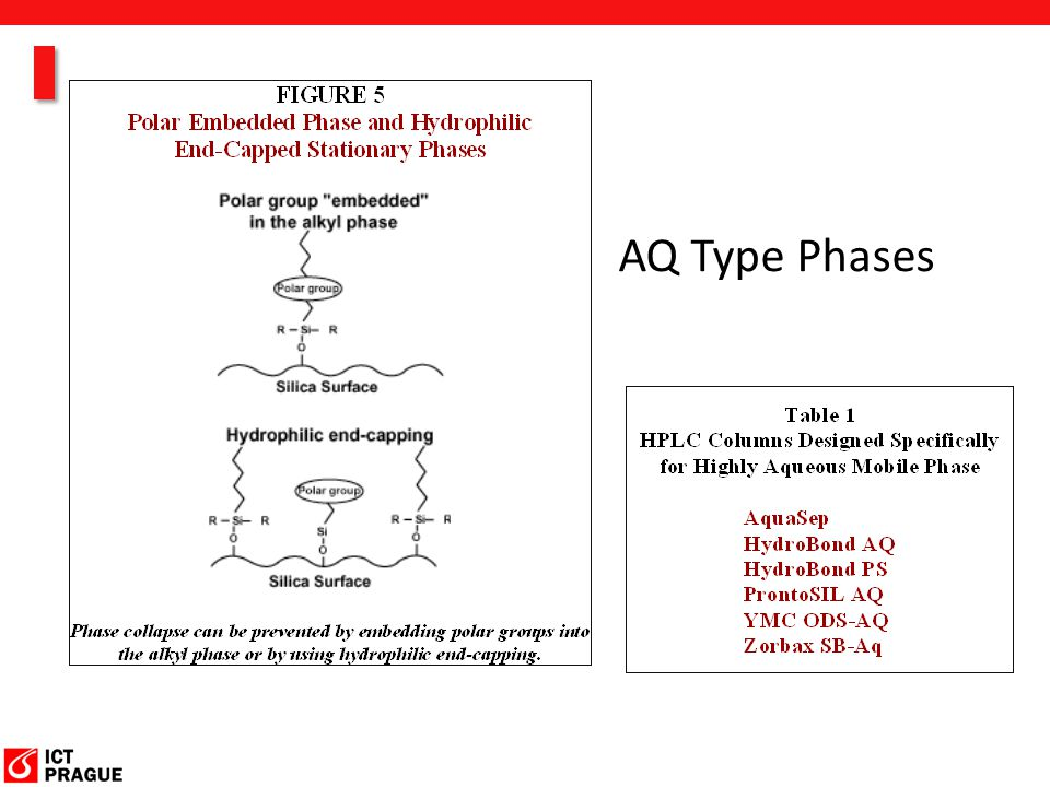 AQ Type Phases