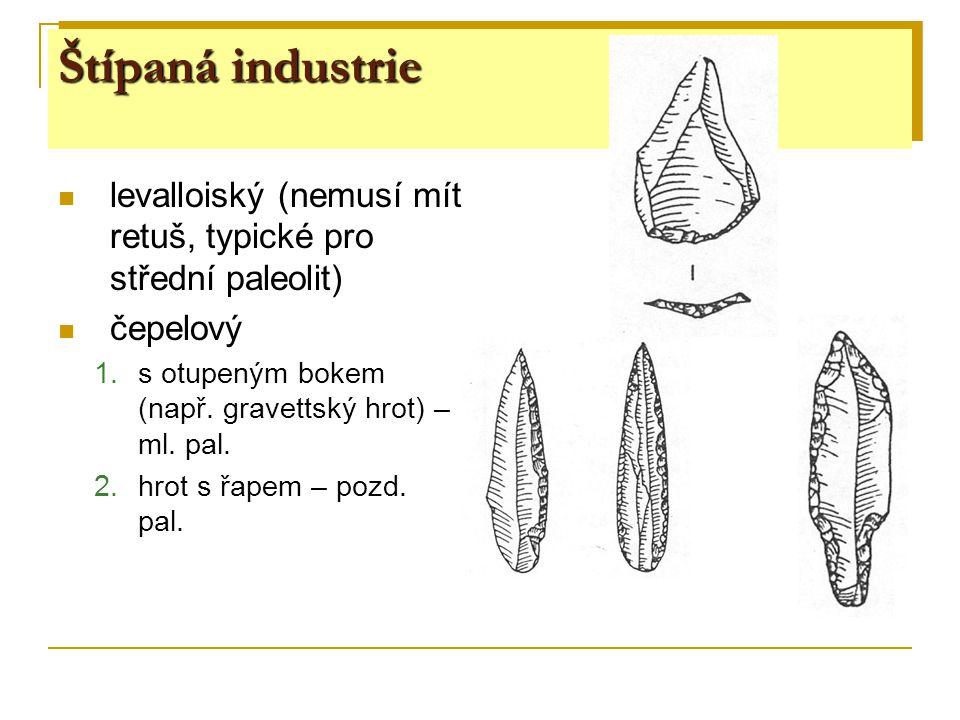 Štípaná industrie levalloiský (nemusí mít retuš, typické pro střední paleolit) čepelový. s otupeným bokem (např. gravettský hrot) – ml. pal.