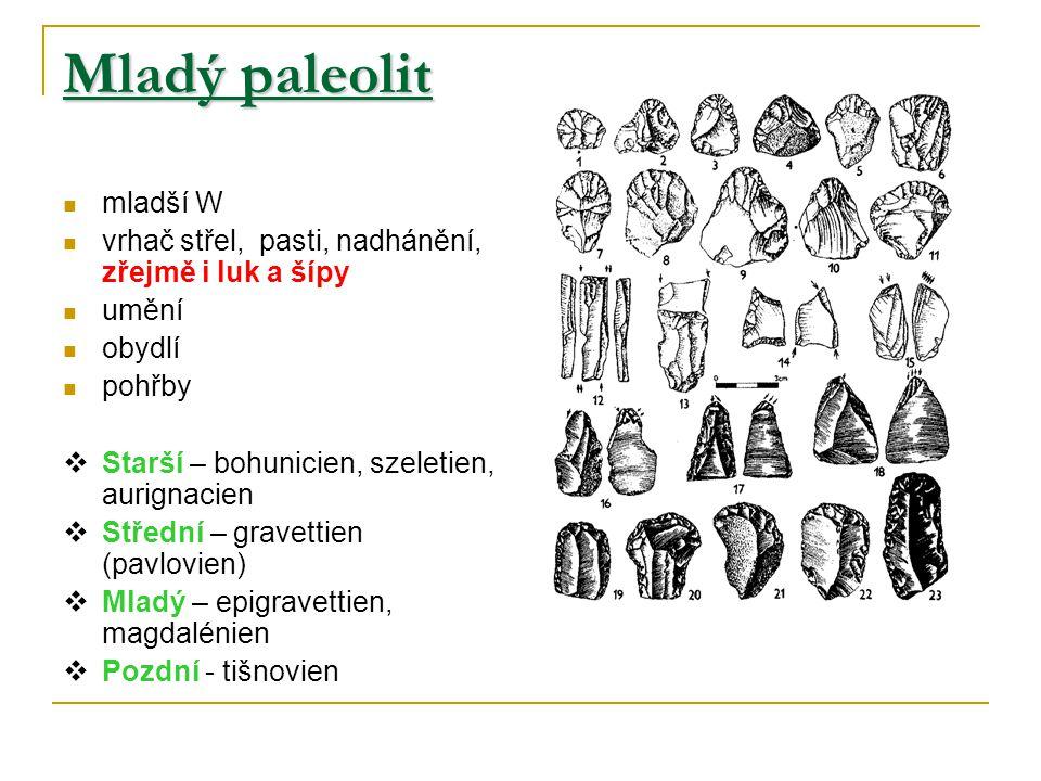Mladý paleolit mladší W