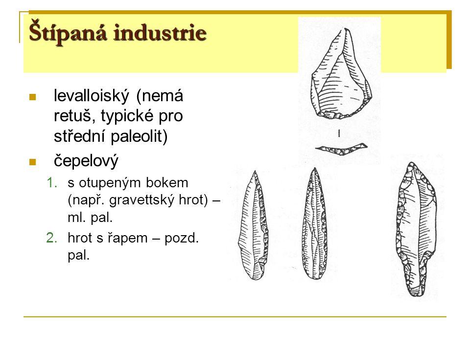 Štípaná industrie levalloiský (nemá retuš, typické pro střední paleolit) čepelový. s otupeným bokem (např. gravettský hrot) – ml. pal.