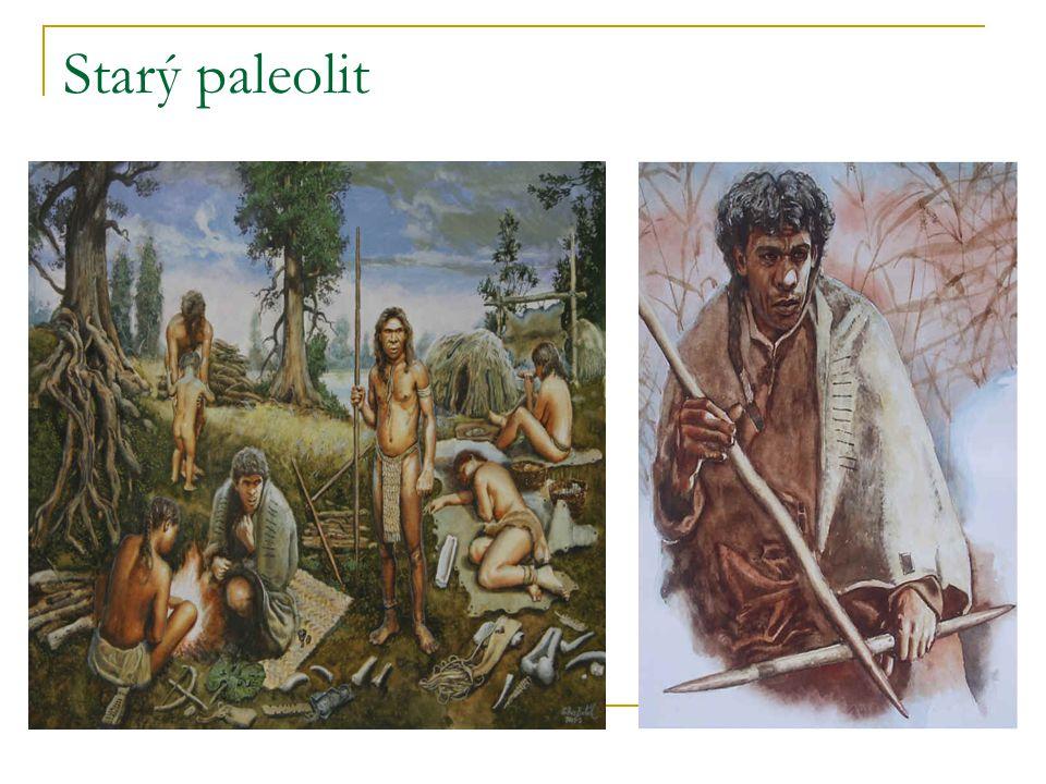 Starý paleolit