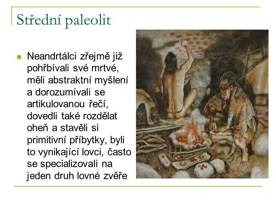Střední paleolit