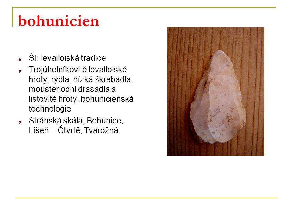 bohunicien ŠI: levalloiská tradice