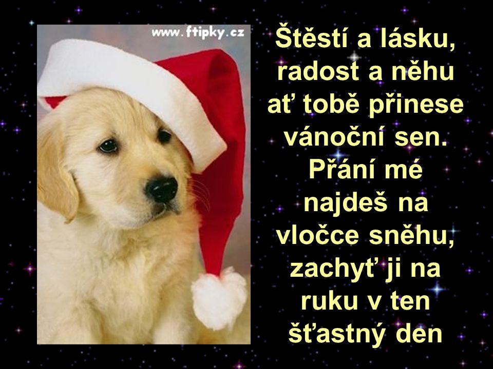 Štěstí a lásku, radost a něhu ať tobě přinese vánoční sen