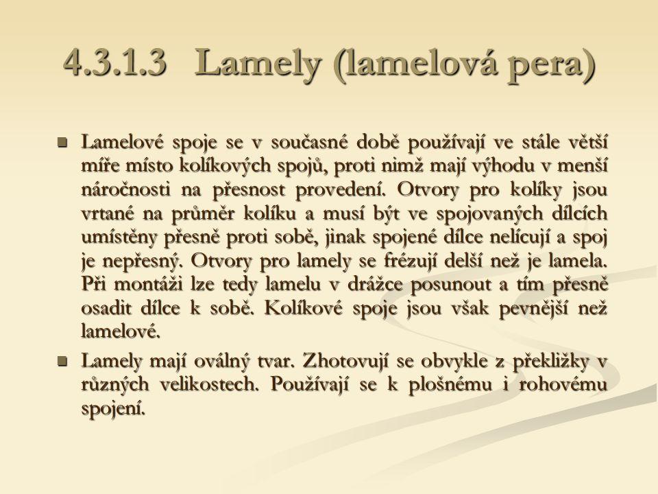 4.3.1.3 Lamely (lamelová pera)