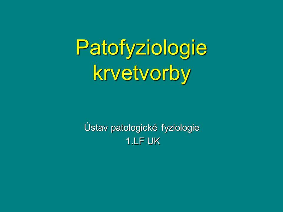 Patofyziologie krvetvorby