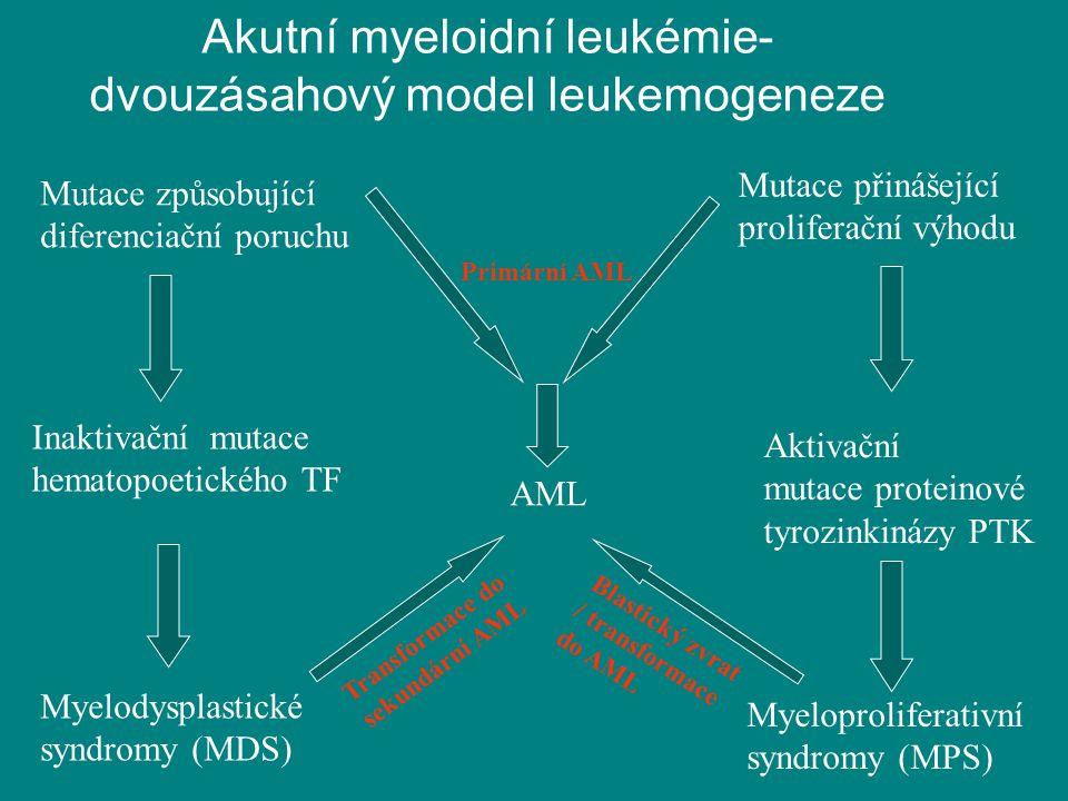 Akutní myeloidní leukémie- dvouzásahový model leukemogeneze