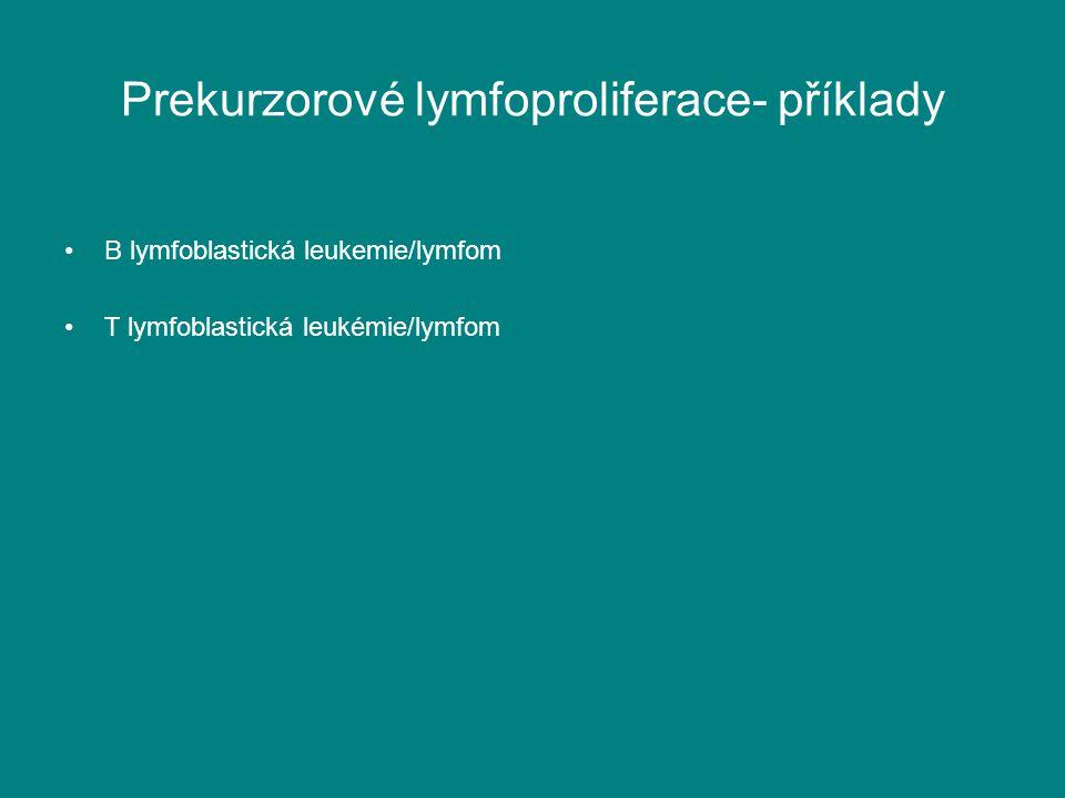 Prekurzorové lymfoproliferace- příklady