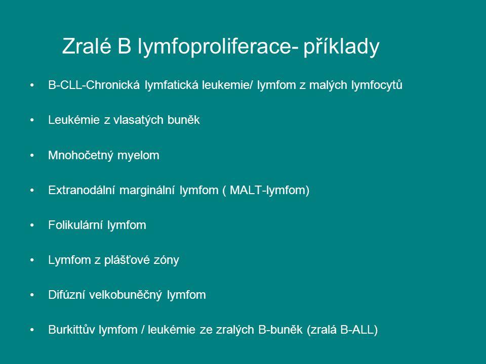 Zralé B lymfoproliferace- příklady