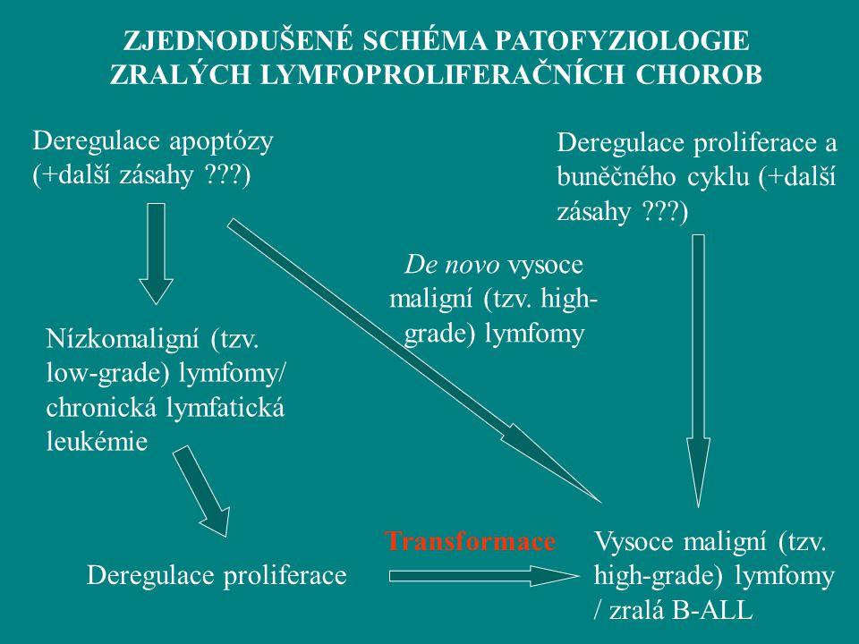 ZJEDNODUŠENÉ SCHÉMA PATOFYZIOLOGIE ZRALÝCH LYMFOPROLIFERAČNÍCH CHOROB
